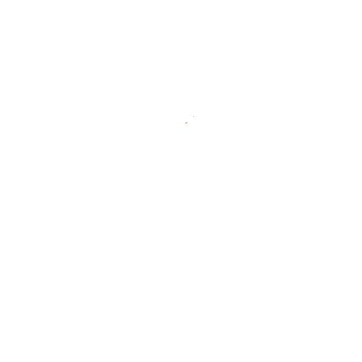 Logo Naturspezialitäten Südsteiermark